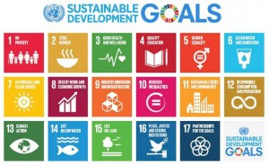 Sustainable_development_goals_2015