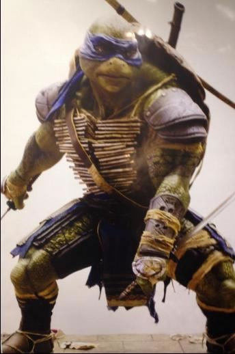 Visual de Leonardo