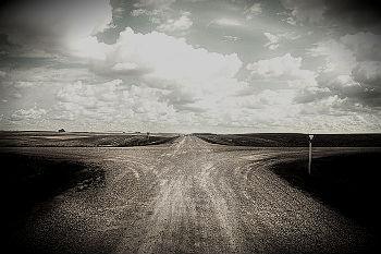 A longa estrada da peregrinação partidária de cidistas e ciristas chegou a uma encruzilhada: para onde forem, correm o risco de contradição.